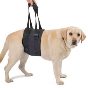 Arnés ortopédico para perros